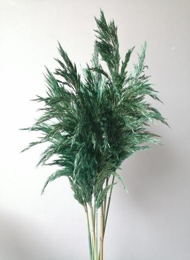 Kuru Çiçek Deposu Yeşil Pampas Demeti Kuru Çiçek Yeşil